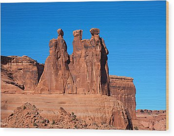 Wood Print featuring the photograph The Watchers by John M Bailey
