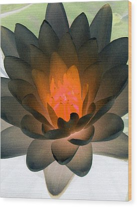 Wood Print featuring the photograph The Water Lilies Collection - Photopower 1036 by Pamela Critchlow