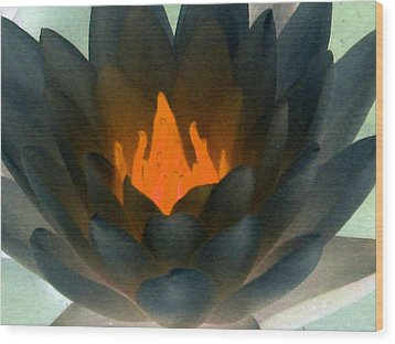 Wood Print featuring the photograph The Water Lilies Collection - Photopower 1038 by Pamela Critchlow