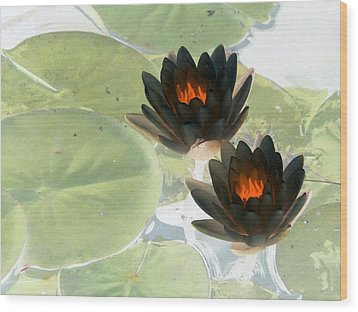 Wood Print featuring the photograph The Water Lilies Collection - Photopower 1039 by Pamela Critchlow