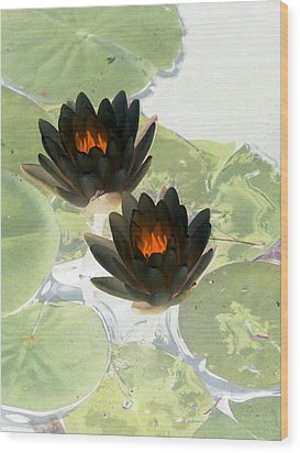 Wood Print featuring the photograph The Water Lilies Collection - Photopower 1040 by Pamela Critchlow
