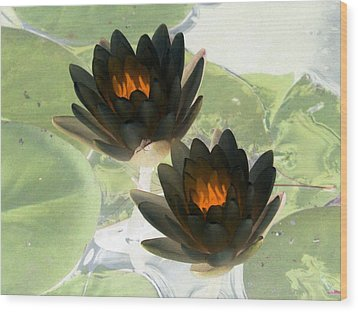 Wood Print featuring the photograph The Water Lilies Collection - Photopower 1041 by Pamela Critchlow