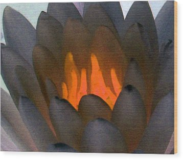 Wood Print featuring the photograph The Water Lilies Collection - Photopower 1044 by Pamela Critchlow