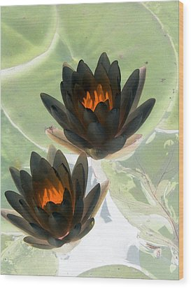 Wood Print featuring the photograph The Water Lilies Collection - Photopower 1046 by Pamela Critchlow