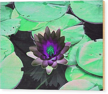 The Water Lilies Collection - Photopower 1113 Wood Print