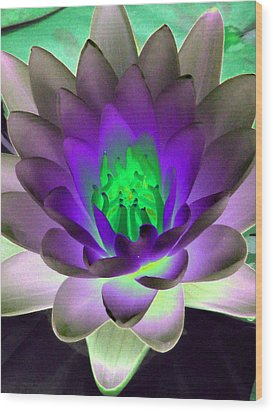 Wood Print featuring the photograph The Water Lilies Collection - Photopower 1115 by Pamela Critchlow