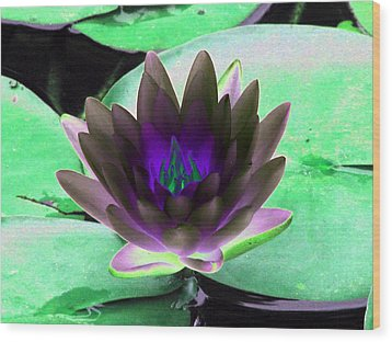 Wood Print featuring the photograph The Water Lilies Collection - Photopower 1116 by Pamela Critchlow