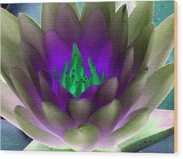 Wood Print featuring the photograph The Water Lilies Collection - Photopower 1117 by Pamela Critchlow