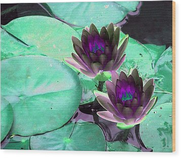 Wood Print featuring the photograph The Water Lilies Collection - Photopower 1118 by Pamela Critchlow