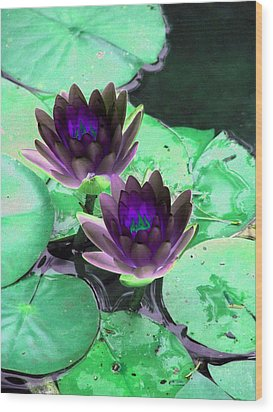 Wood Print featuring the photograph The Water Lilies Collection - Photopower 1119 by Pamela Critchlow