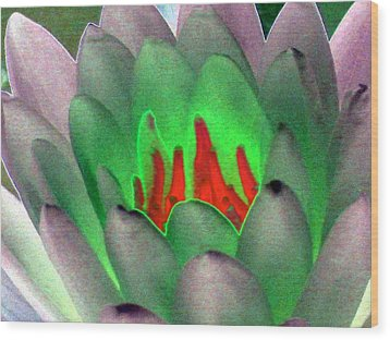 Wood Print featuring the photograph The Water Lilies Collection - Photopower 1123 by Pamela Critchlow