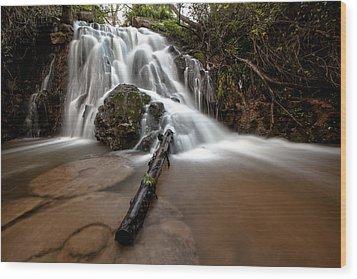 The Waterfall Wood Print by Ricardo Silva