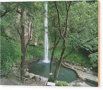 The Waterfalls Wood Print by Fladelita Messerli-