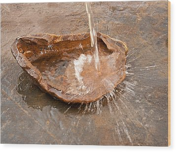 Wood Print featuring the photograph The Watering Spot by Lena Wilhite