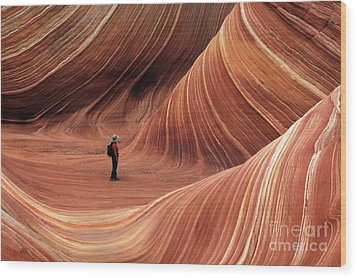 The Wave Seeking Enlightenment Wood Print by Bob Christopher