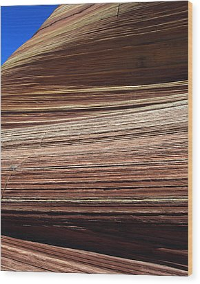 'the Wave' North Coyote Buttes 06 Wood Print by Jeff Brunton