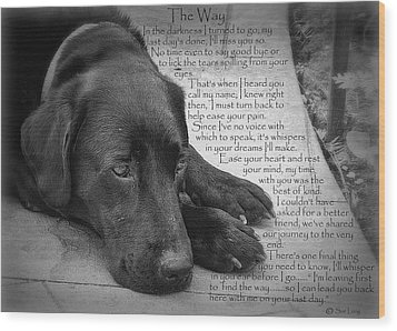 The Way Black Lab Wood Print
