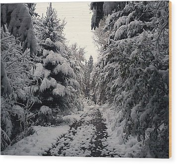 Wood Print featuring the photograph The Way In Snow by Felicia Tica