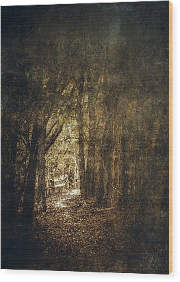 The Way Out Wood Print by Scott Norris