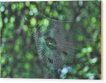 The Web Wood Print