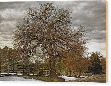 The Welcome Tree Wood Print by Jerry Gammon