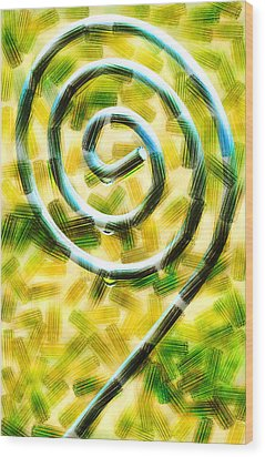 The Wet Whirl  Wood Print by Steve Taylor