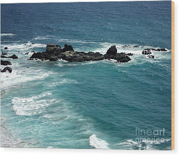 The Whale Rock Wood Print by Carla Carson