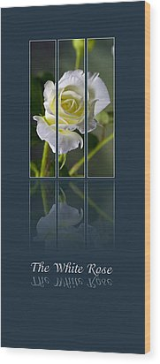 The White Rose Wood Print by Sarah Christian