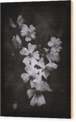 Wood Print featuring the photograph The Wild Roses by Louise Kumpf