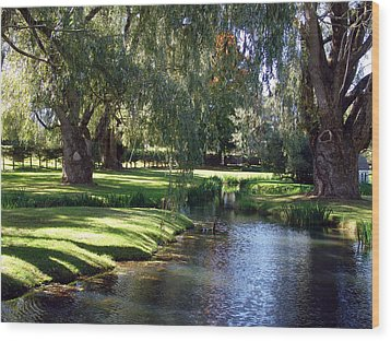 The Willows Of Grand Pre Wood Print by George Cousins