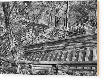 The Winding Stairs Wood Print by Howard Salmon