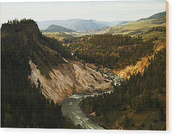 The Winding Yellowstone Wood Print by Jeff Swan