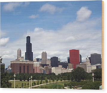 Wood Print featuring the photograph The Windy City by Teresa Schomig