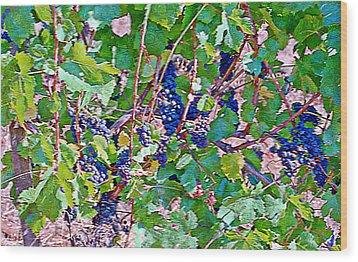The Wine Maker I Wood Print by Ken Evans