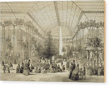 The Winter Garden Wood Print by A Provost