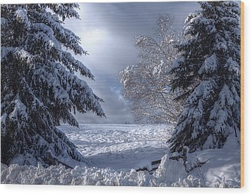 The Winter Pathway Wood Print by Gary Smith
