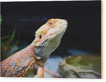 The Wise Lizard Wood Print by Celestial Images