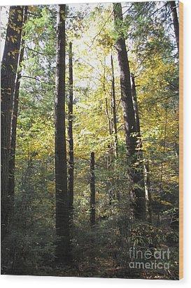 The Yellow Wood Wood Print