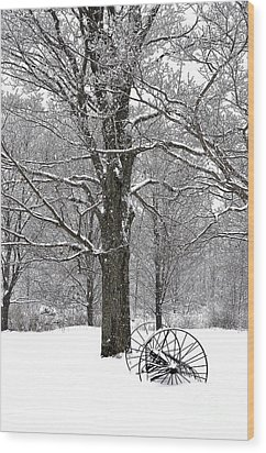 There Is A Kind Of Hush Wood Print by Diane E Berry