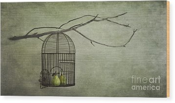 There Is A World Outside Wood Print by Priska Wettstein