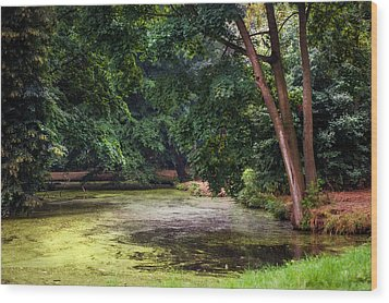 There Is Always A Hope. Park Of De Haar Castle Wood Print by Jenny Rainbow