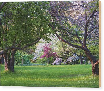 There Is No Place Like Spring Wood Print