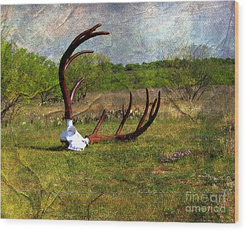 They Grow Them Big In Texas Wood Print