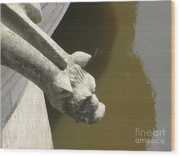 Thirsty Gargoyle Wood Print by HEVi FineArt