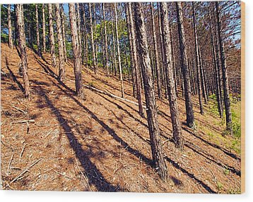 This Is A Steep Hill For Old Legs Wood Print by Constantine Gregory