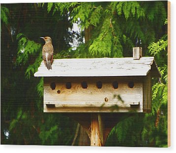 This Place Is Too Crowded Wood Print by Kym Backland