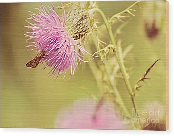 Thistle And Friend Wood Print by Lois Bryan