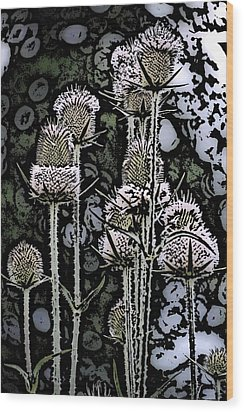 Wood Print featuring the digital art Thistle  by David Lane