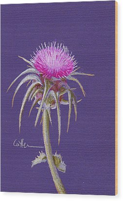 Thistle Wood Print by Diane Cutter