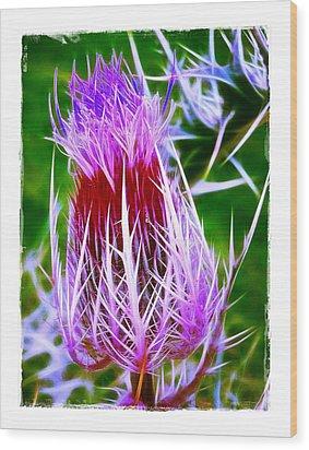 Thistle Wood Print by Judi Bagwell